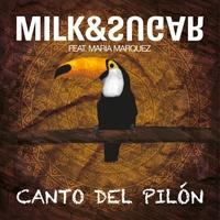 Cover of the track Canto del Pilón (Remixes) [feat. María Marquez]