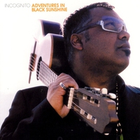Cover of the track Adventures in Black Sunshine