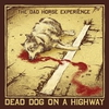 Cover of the album Dead Dog On A Highway