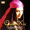 Cover of the album Anadolu Yakasi