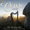 Cover of the album The Morning Dew – Celtic Harp