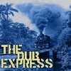 Couverture de l'album The Dub Express Vol 12 Platinum Edition
