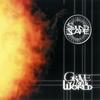 Couverture de l'album Grave New World
