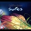 Cover of the album Áurea