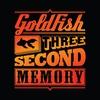Couverture de l'album Three Second Memory