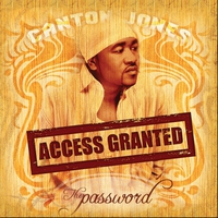 Cover of the track Access Granted: The Password