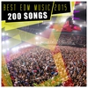 Cover of the album Best EDM Music 2015 - 200 Songs