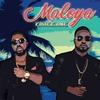 Couverture de l'album Maloya - Single