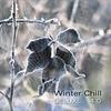 Couverture de l'album Winter Chill Deluxe 4.0
