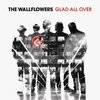 Cover of the album Glad All Over
