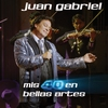 Cover of the album Mis 40 en Bellas Artes (En Vivo Desde Bellas Artes, México/ 2013)