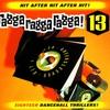 Cover of the album Ragga Ragga Ragga 13