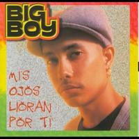Cover of the track Mis Ojos Lloran Por Ti