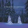 Couverture de l'album In the Spirit of Christmas II