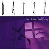 Couverture de l'album Batzz in the Belfry