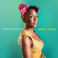 Couverture du titre Soul Run