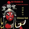 Couverture de l'album Chinese Dub