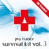 Couverture de l'album Psy Trance Survival Kit, Vol. 2