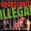 Cover of the album Grobschnitt Story, Vol. 4 (Live, Grugahalle Essen 08.05.1981)