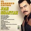 Cover of the album 15 Grandes Exitos - Joan Sebastian