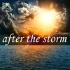Couverture de l'album After the Storm