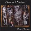 Cover of the album Gradual Motion