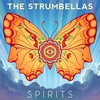 Cover of the track Spirits  (2016)