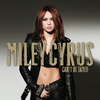 Couverture de l'album Can't Be Tamed