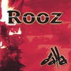 Couverture de l'album Rooz