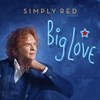 Couverture de l'album Big Love
