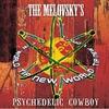 Couverture de l'album Psychedelic Cowboy