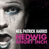 Cover of the album Hedwig and the Angry Inch (Original Broadway Cast Recording)
