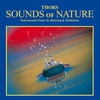 Couverture de l'album Sounds Of Nature : Instrumental Music For Relaxation