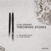 Cover of the album Throwing Stones - Single