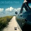 Couverture de l'album Pe Barba Mea - Single