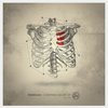 Cover of the album Confined Heart - Single
