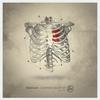 Couverture de l'album Confined Heart - Single
