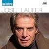 Cover of the album Pop galerie Josef Laufer