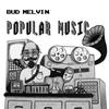 Cover of the album Popular Music
