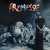 Cover of the album Promesse