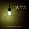 Couverture de l'album The Ostrich Effect