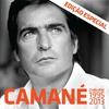 Couverture de l'album Camané - O Melhor 1995-2013