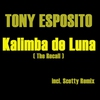 Cover of the album Kalimba De Luna (The Recall) [Remixes] - EP