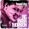Couverture du titre Hound Dog