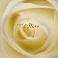 Couverture du titre A Rose