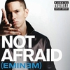 Couverture du titre Not Afraid