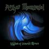 Couverture de l'album Kingdom of Distorted Mirrors