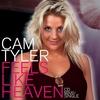 Couverture de l'album Feels Like Heaven (Maxi-Single)