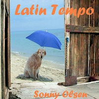 Cover of the track Latin Tempo