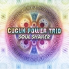 Couverture de l'album Soul Shaker